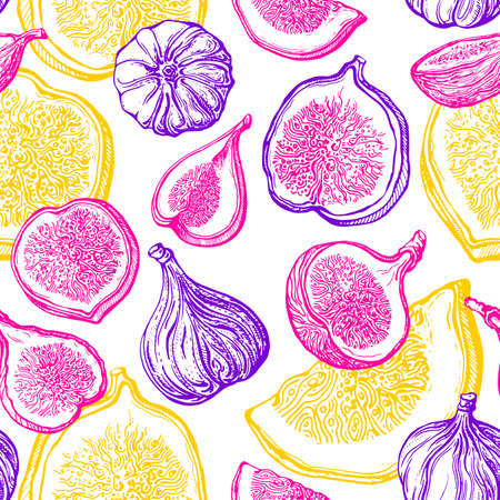 Fig seamless pattern. Vector shape of fruit, sliced piece. Color print on white background. Art hand drawn illustration. Bright sketch, engraving. Fresh food, juicy pulp. Summer natural dessert Ilustração