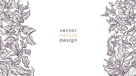 Vector nature border on white