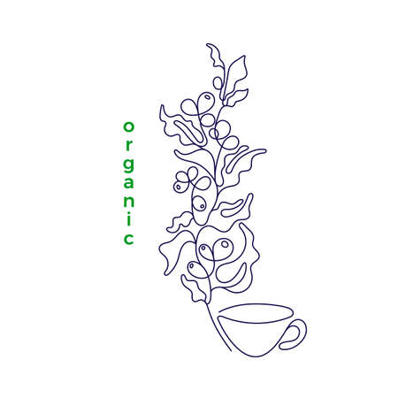 Black art single line on white background. Sketch isolated vector illustration. Outline minimal drawing. Organic coffee plant, bean, cup of drink