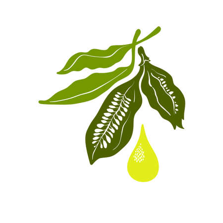 Sesame oil. Vector symbol. Healthy seed, organic food, natural organic drop of butter, bio ingredient. Green plant on white background