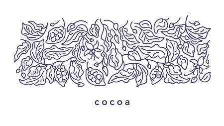 Cacao design. Art line pattern. Vector abstract plant, simply leaves, flower, grain. Graphic floral illustration on white background. Organic dark chocolate Ilustração