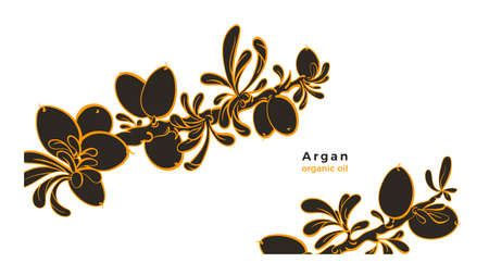 Argan tree. Vector template. Art line sketch berry, leaves. Graphic illustration on white background. Farm organic oil, bio harvest, african plantation Ilustração