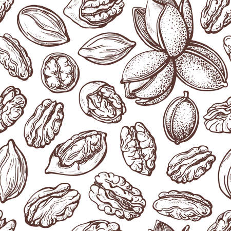 Pecan nuts seamless pattern in vintage style. Vector texture silhouettes sketch. Botanical illustration on white background. Organic healthy food. Packaging design, hand drawn print
