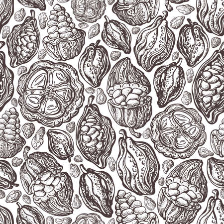 Cacao beans texture seamless pattern. Vector hand drawn exotic wild fruit. Natural chocolate. Organic sweet food. Art vintage sketch on white background. Antique wallpaper