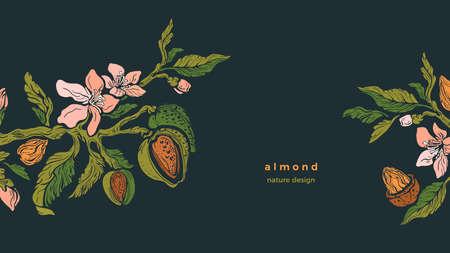 Almond template. Vector branch, nuts, flower in bloom, green leaves. Vintage floral illustration on black background. Organic food, vegan milk. Summer garden