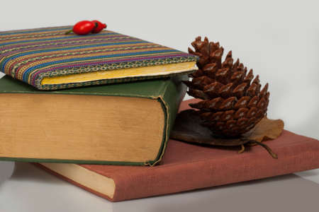 three books in different colours with pine cone photo