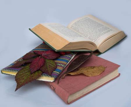 messy books photo