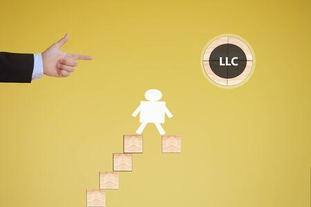 company: limited liability company