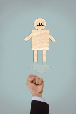 limited: limited liability company