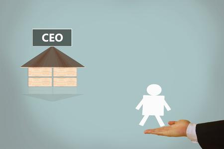 chief executive officer: chief executive  officer