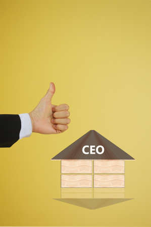 chief: chief executive  officer