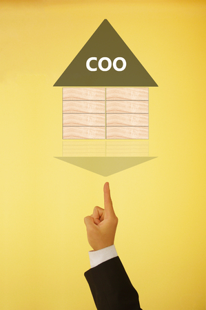 coo: chief operating officer