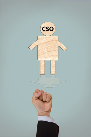 sourcing: chief strategy  officer,chief security officer,chief sourcing officer