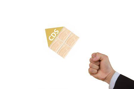 swap: credit default swap