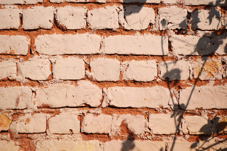 vintage background: vintage background of brick wall