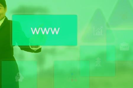 word wide web (www) concept