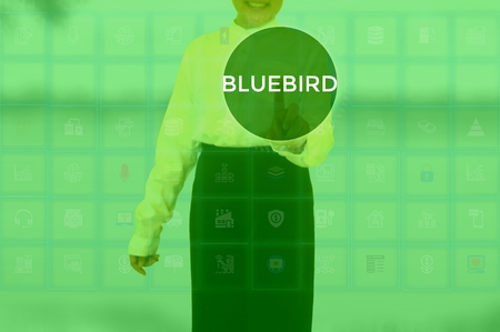 select BLUEBIRD - technology and business concept Stock Photo