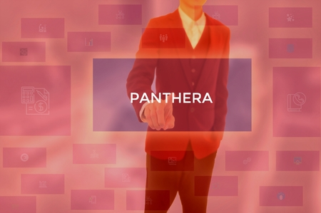 PANTHERA - technology and business concept