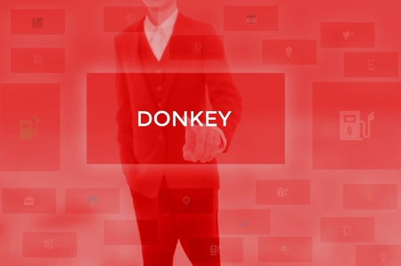 DONKEY - technology and business concept