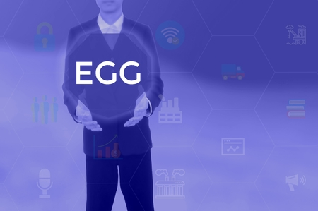 EGG - technology and business concept