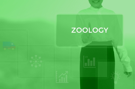 ZOOLOGY - technology and business concept Stock Photo