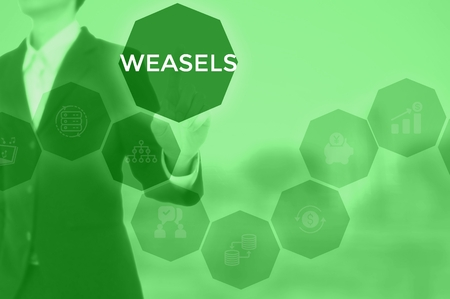 WEASELS - technology and business concept