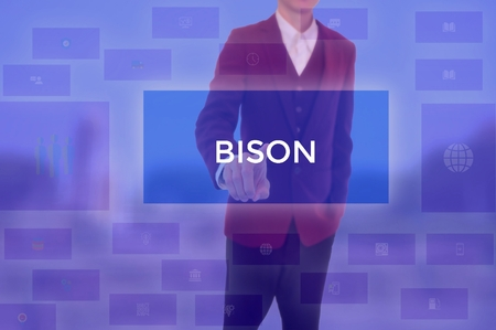 select BISON - technology and business concept Stok Fotoğraf