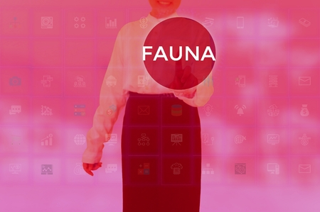 FAUNA - technology and business concept