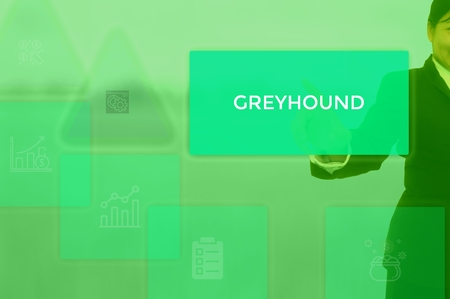 GREYHOUND - technology and business concept