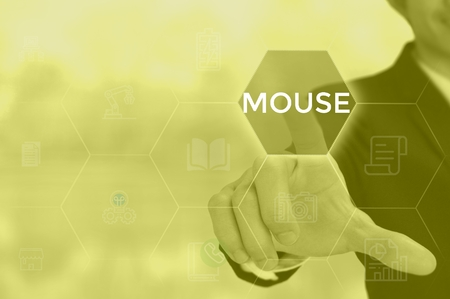 MOUSE - technology and business concept Standard-Bild - 119751883