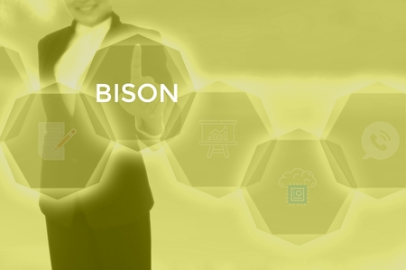 select BISON - technology and business concept Imagens
