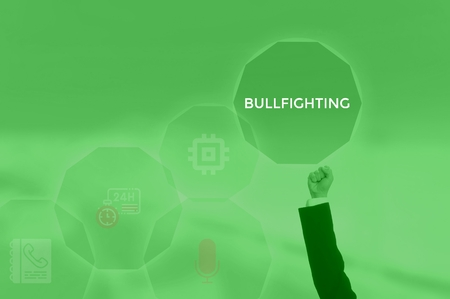 BULLFIGHTING - technology and business concept