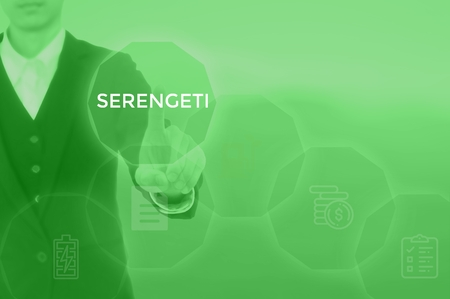 SERENGETI - technology and business concept Stock Photo