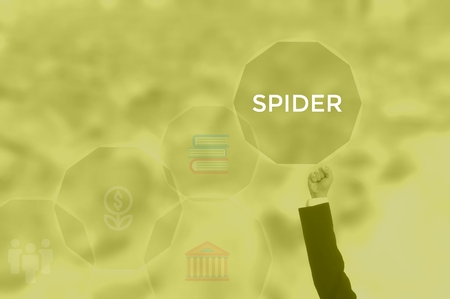 SPIDER - technology and business concept