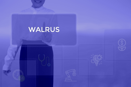 WALRUS - technology and business concept Banque d'images - 120154133