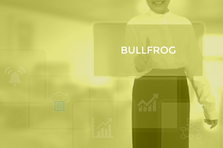 BULLFROG - technology and business concept