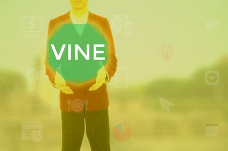 VINE - technology and business concept