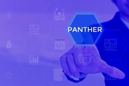 PANTHER - technology and business concept Фото со стока