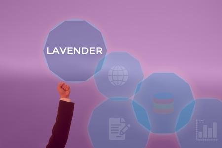 LAVENDER - technology and business concept Stock Photo