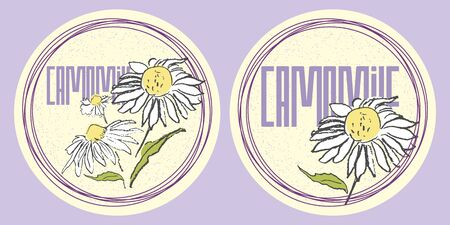 camomile tea: Round stickers set of hand drawn camomiles in pastel colors for organic design of healthy products. Illustration