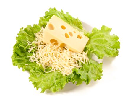 Picture of a plate of lettuce, maasdam Stock Photo - 14462712