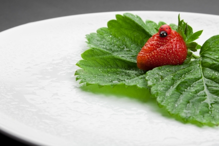 Red strawberry with green leaves on the white plate photo