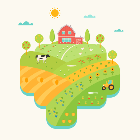 field crop: Farm House, Hills and Fields Illustrated Map. Agriculture Concept Illustration