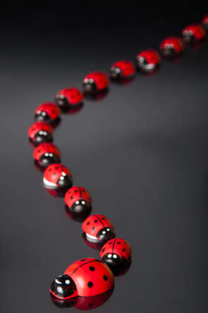Ladybirds in queue
