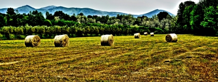 Daytime panoramic of a countryside setting