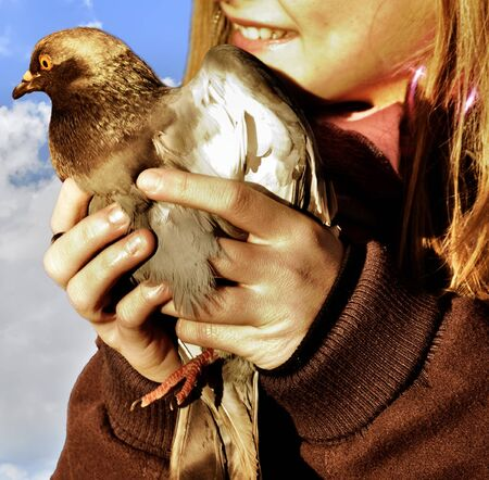 pigeon in the hands of a teenager Stock Photo - 17425824