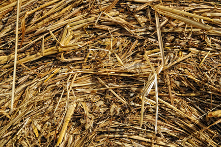Background bale of straw