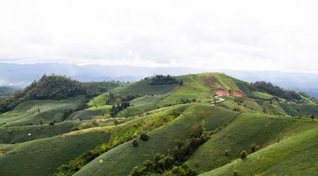 encroach: Mountain landscape and farm in Thailand