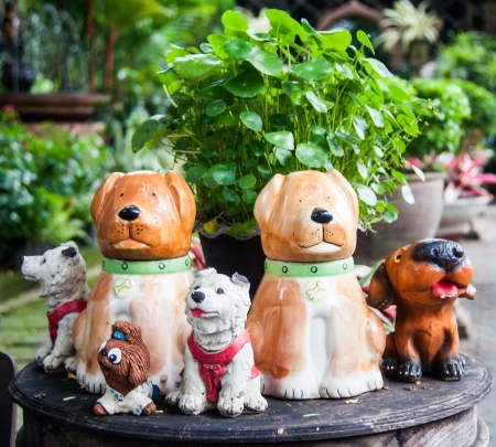 Sitting English cocker dog Stock Photo