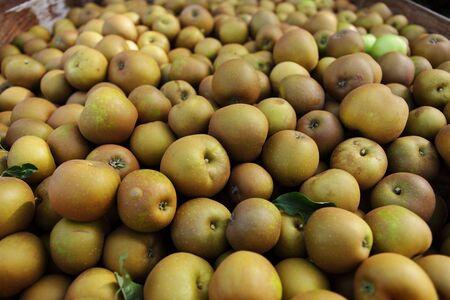 Winsor apples